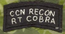 Team Cobra