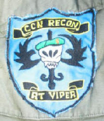 CCN VIPER