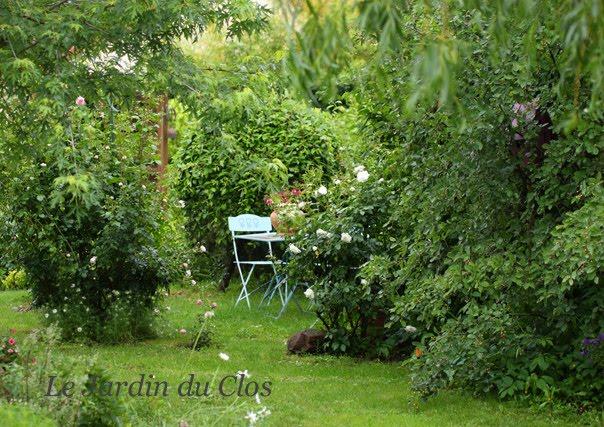 Le jardin du clos apr s l 39 orage for Le jardin clos