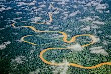 El serpentear del rio Manu