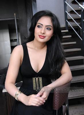 Hot Indian Actress Blog:South Actress Hot Nikeesha Patel