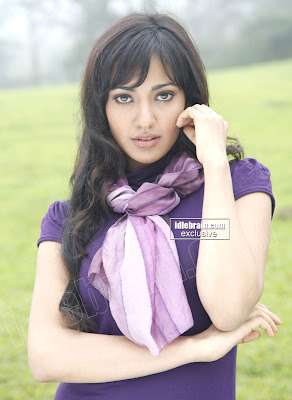 HOT NEHA SHARMA Pictures in WHITE SHORTS And BLUE TOP With Sexy Hot looks