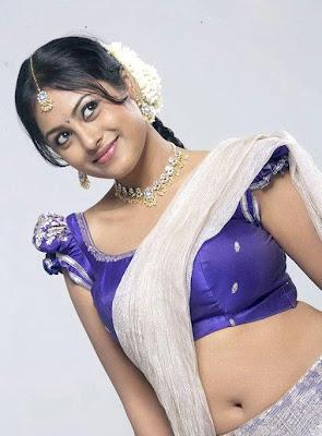 MEENAKSHI HOT South Indian HOT MASALA Actress Pics