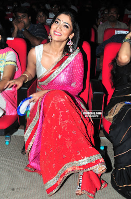 Sexy SHRIYA SARAN HOT Pics In Saree From an Award Function