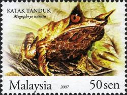 Frogs Of Malaysia 50sen Horned Toad Stamp