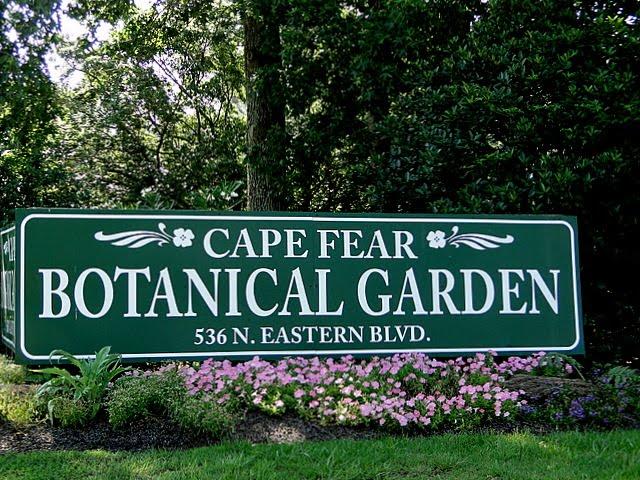 On Carolina Wings Cape Fear Botanical Gardens Sony Style