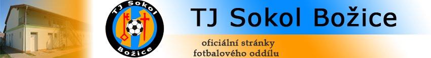 TJ Sokol Božice