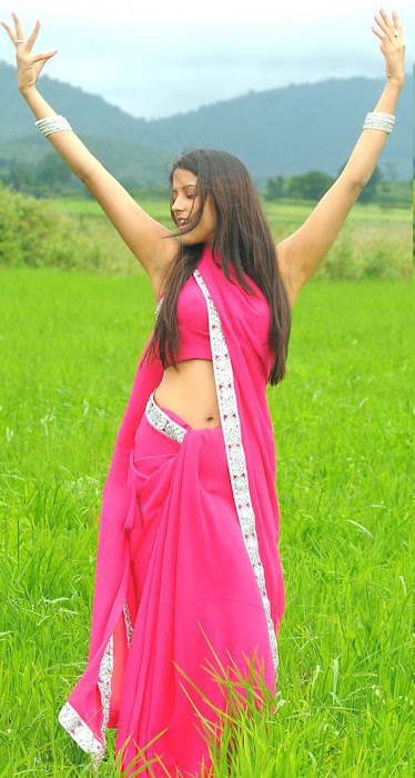 rithika in pink saree
