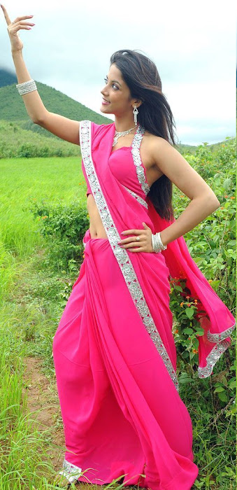 rithika in pink saree latest photos