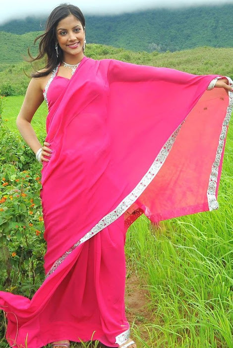 rithika in pink saree actress pics