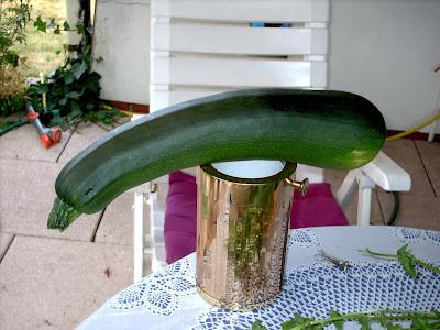 Reinhards Riesen-Zucchini