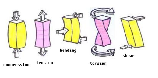 DNT Thoughts: For All Sec 1: Revision Notes 2 (Structure - Types ...
