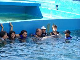 Delfinoterapia en Venezuela