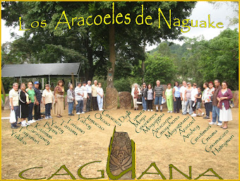 Aracoeles de  la Liga  en Caguana