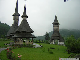 Mănăstirea Bîrsana