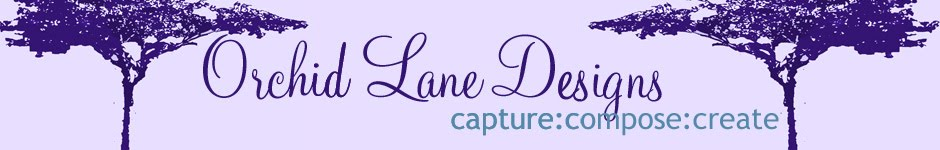 Orchid Lane Designs