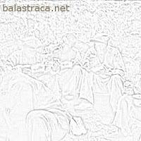 escravo, escravidão, fazenda, brasil, trabalho, exploração