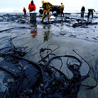 vazemento, petróleo, golfo, méxico, British Petroleum, desastre ambiental