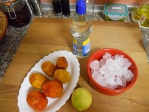 Ingredientes del sorbete de higos chumbos.