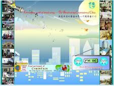 2009國際學校網界博覽會地方企業組織類最高榮譽白金獎