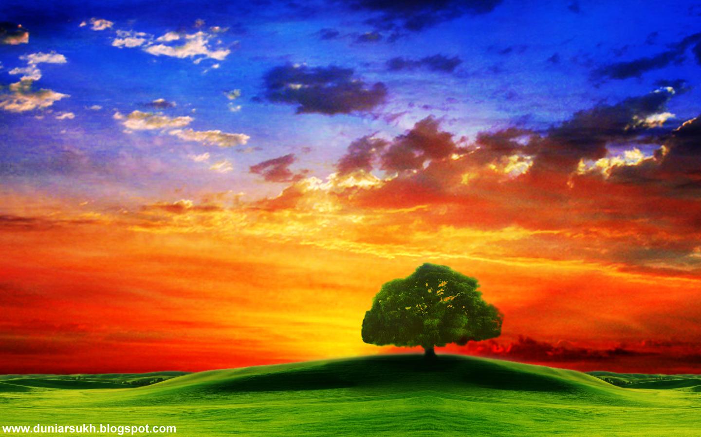 http://4.bp.blogspot.com/_aTX-Oa7T9y0/TSQke6HswCI/AAAAAAAAAk0/arbwr08dq9w/s1600/1287393969_1440x900_lonely-tree-on-a-plain.jpg