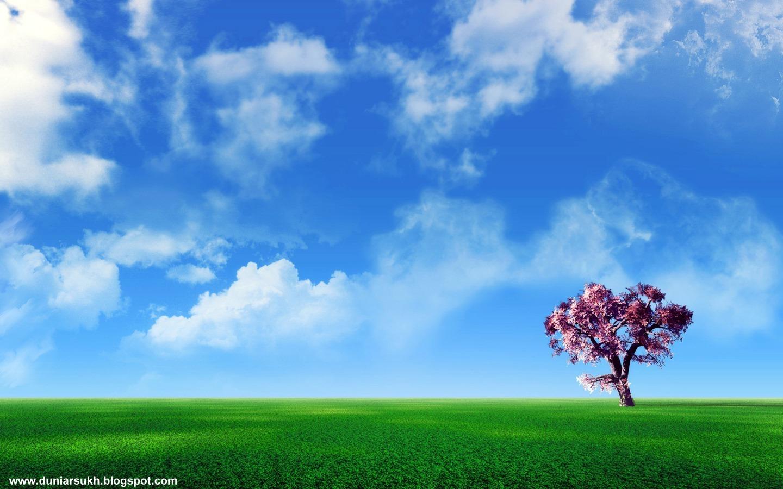 http://4.bp.blogspot.com/_aTX-Oa7T9y0/TSQlcO85KbI/AAAAAAAAAk8/E812ttCeTLY/s1600/1287394228_1440x900_cherry-tree-on-the-plain.jpg