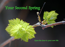 YOUR SECOND SPRING