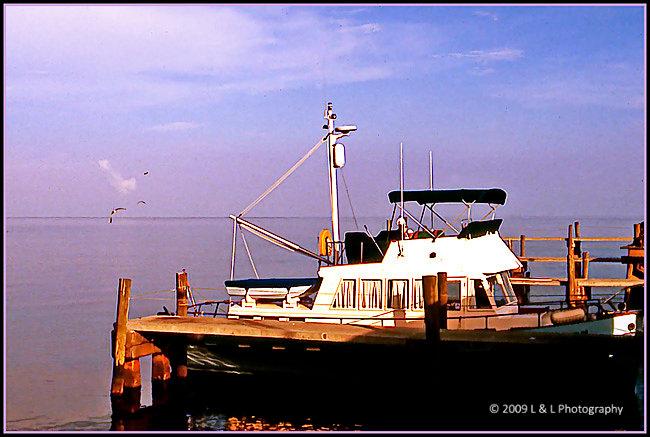 Cedar key florida photos a great day for fishing for Cedar key fl fishing