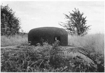 1939 р і ханцевичі 1940 р 8 с 195