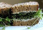 BioVega szendvicsrendelés