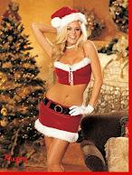 Disfraz navideño