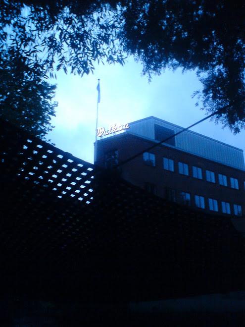view through the net to Dansens Hus at Vulkan