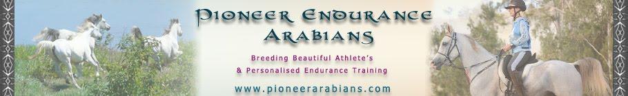 Pioneer Park Arabians & Endurance Horses