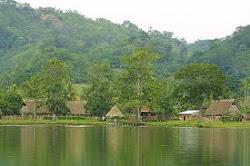 Selva del Perú