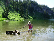 Swimming with my pups, 2008
