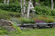 a heather garden
