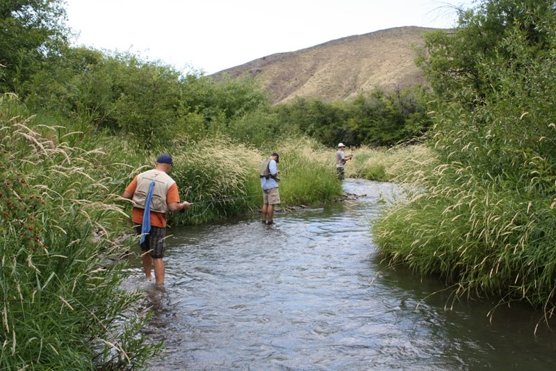 Wyoming fly fishing in star valley for Wyoming fly fishing