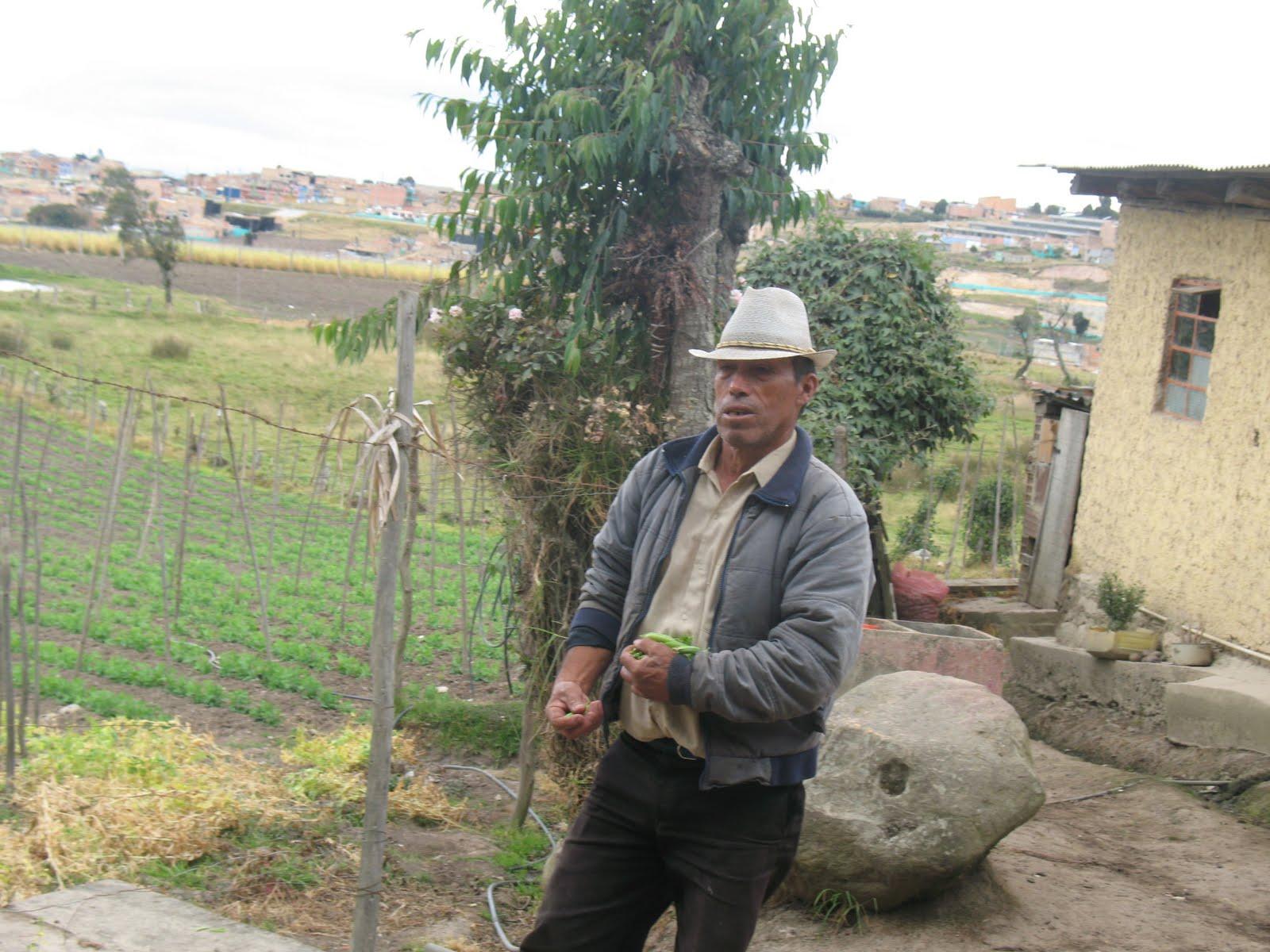 Sobre m proyecto vivir en el campo for Jardin unal 2016