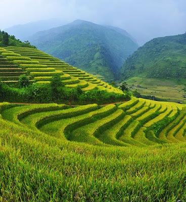 http://viajeindochina.com/destinos/vietnam/sapa.html