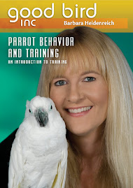 Intro to Training with Positive Reinforcement