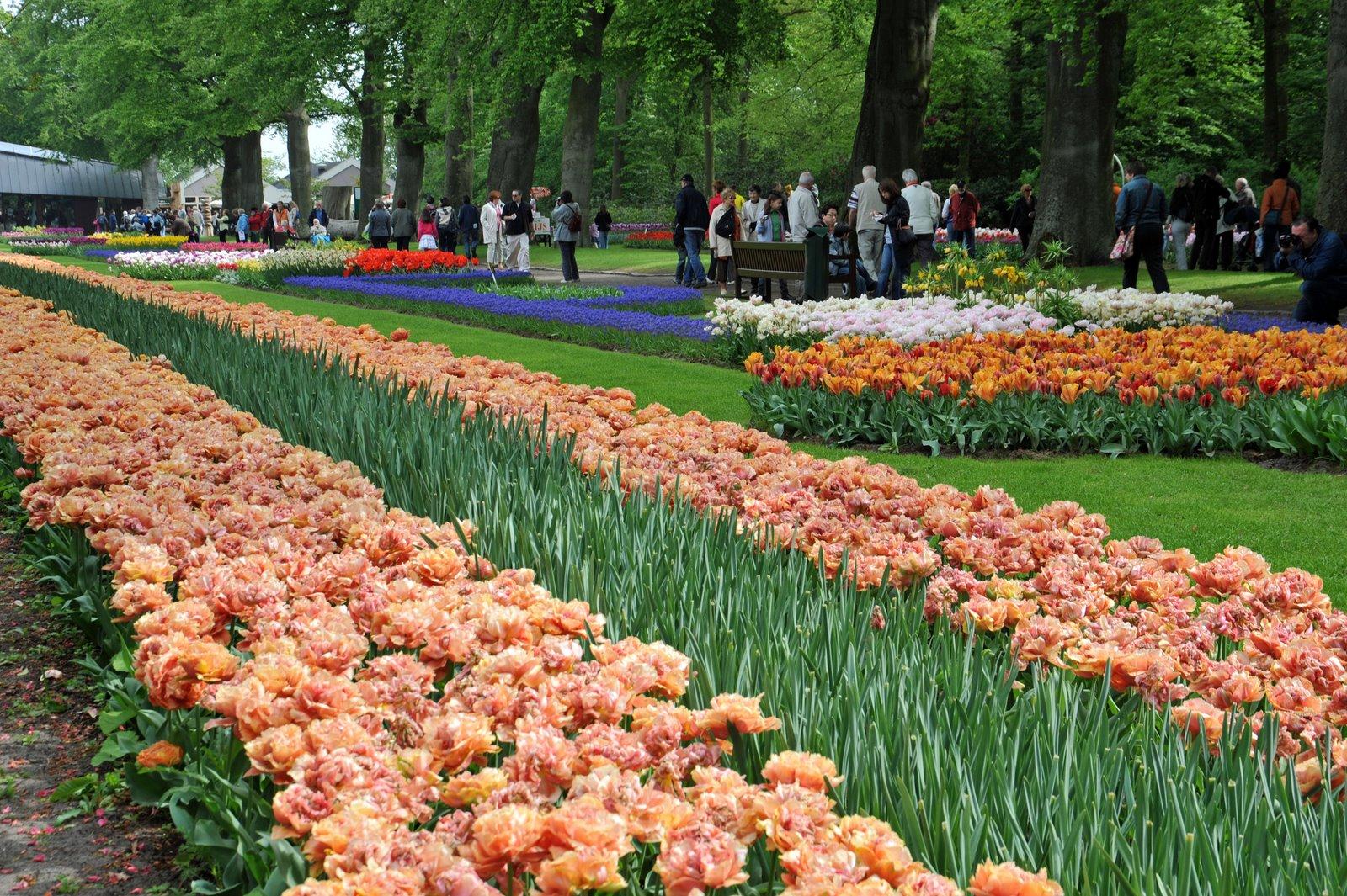 Сад Европы Кёкенхоф