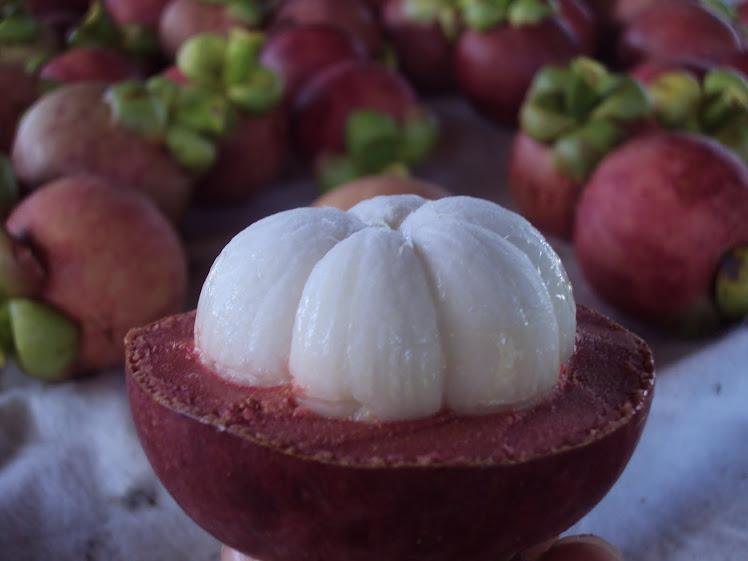 Fruto do Mangostim
