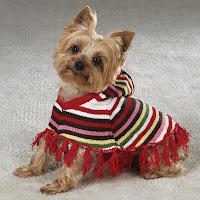 вязание собакам