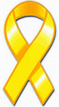 Bladder Cancer Awareness Ribbon