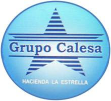 Grupo Calesa
