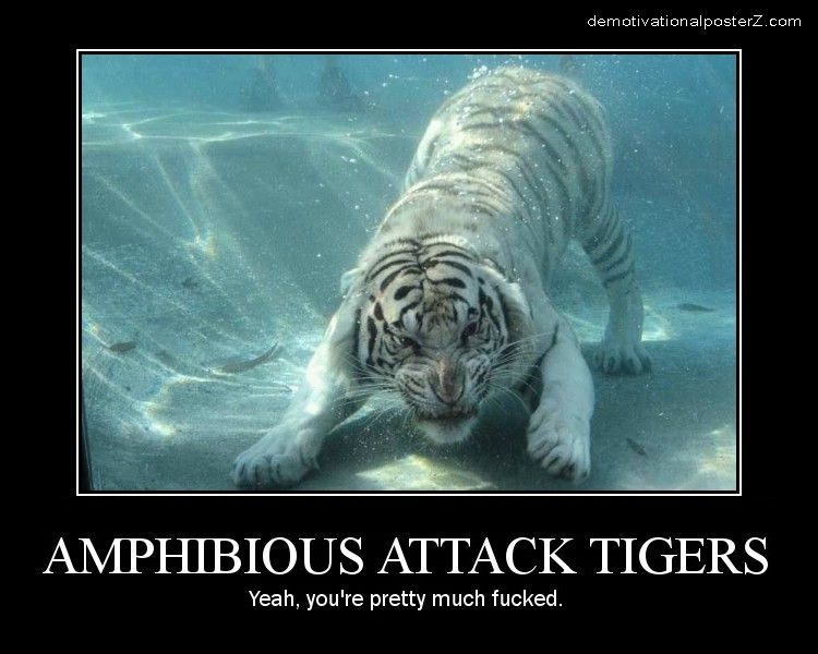 Amphibious Attack Tigers