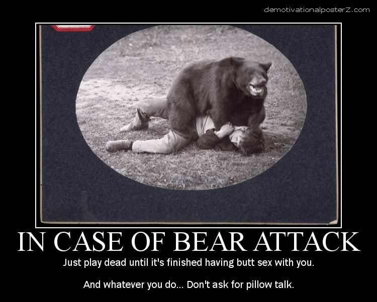 In case of bear attack