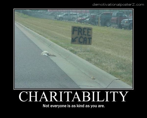 Free cat on highway - charitability