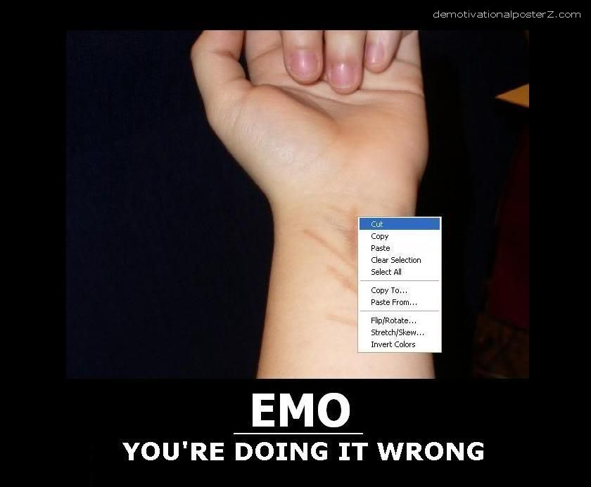 emo doing it wrong poster