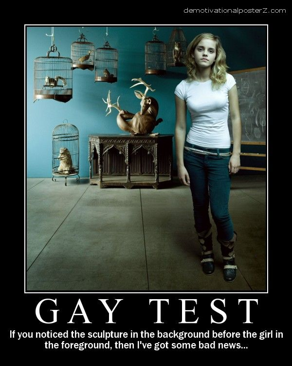 Gay test demotivational